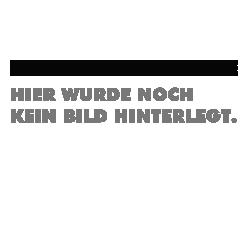OMEGA-Schraubzwinge GMZ-2K 160/80